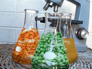 lab food