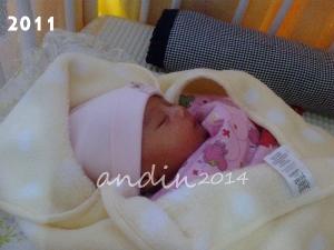 Alma bayi