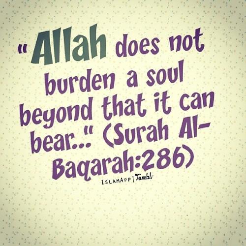 burden2